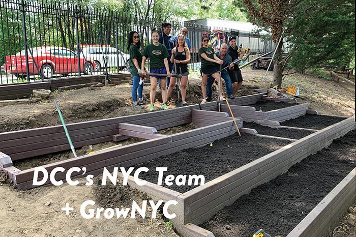 DCC NYC team planting city gardens